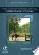 libro Interpelaciones Interculturales En El Currículo De Las Escuelas Del Retorno: Referentes Para Vislumbrar El Posconflicto En Colombia