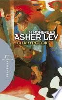 libro Mi Nombre Es Asher Lev