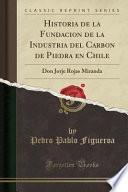 libro Historia De La Fundacion De La Industria Del Carbon De Piedra En Chile
