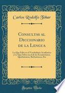 libro Consultas Al Diccionario De La Lengua