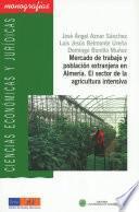 libro Mercado De Trabajo Y Población Extranjera En Almería. El Sector En La Agricultura Intensiva.