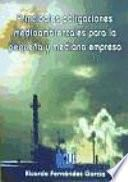 libro Principales Obligaciones Medioambientales Para La Pequeña Y Mediana Empresa
