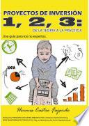 libro Proyectos De Inversión 1, 2, 3: De La Teoría A La Práctica