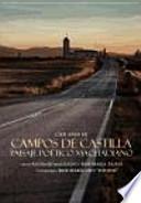 libro 100 Años De Campos De Castilla. Paisaje Poético Machadiano