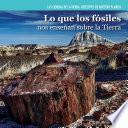 libro Lo Que Los Fosiles Nos Ensenan Sobre La Tierra (investigating Fossils)