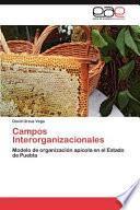 libro Campos Interorganizacionales
