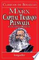 libro Capital, Trabajo Y Plusvalia