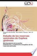 libro Estudio De Las Reservas Seminales De Cuphea Glutinosa