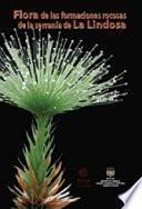 libro Flora De Las Formaciones Rocosas De La Serranía De La Lindosa