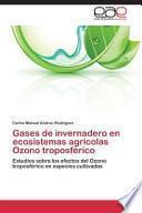 libro Gases De Invernadero En Ecosistemas Agrícolas Ozono Troposférico