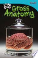 libro Increíble Pero Real: Anatomías Asquerosas (strange But True: Gross Anatomy)