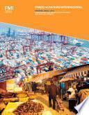 libro Informe Anual 2013 Del Fondo Monetario Internacional