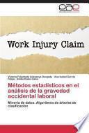 libro Métodos Estadísticos En El Análisis De La Gravedad Accidental Laboral