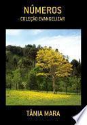 libro NÚmeros