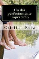 libro Un Dia Perfectamente Imperfecto