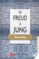 libro De Freud A Jung