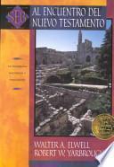 libro Al Encuentro Del Nuevo Testamento
