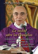 libro Lo Inédito Sobre Los Evangelios   Volumen V