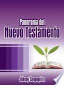 libro Panorama Del Nuevo Testamento